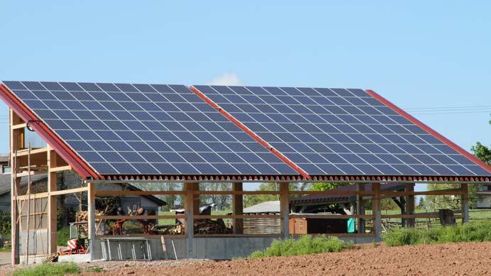 Solarmodule einer PV-Anlage